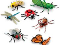 """Дистанционное обучение Тема недели: """"Разнообразный мир Крымских насекомых"""" (для детей 3-5 лет)"""