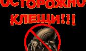 """Профилактика """"клещевых"""" инфекций"""